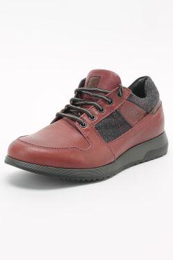 Кроссовки Pal Zileri                                                                                                              красный цвет