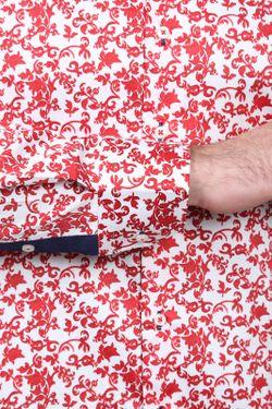 Рубашка Alex Dandy                                                                                                              многоцветный цвет