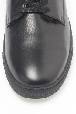 Сапоги Alba                                                                                                              черный цвет