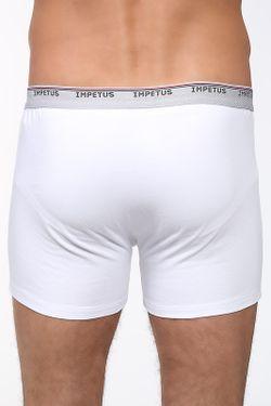 Трусы-Боксеры IMPETUS                                                                                                              белый цвет