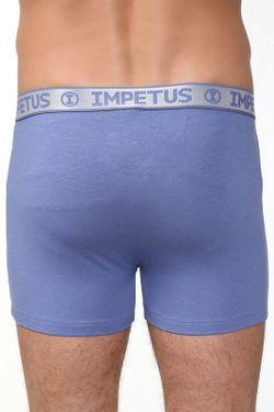Трусы-Боксеры IMPETUS                                                                                                              синий цвет