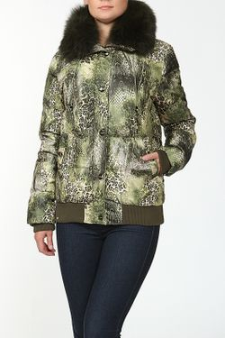 Куртка Пуховая Acasta                                                                                                              многоцветный цвет
