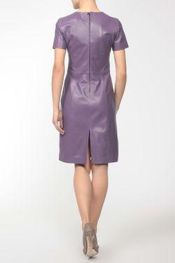 Платье Леди Alicestreet                                                                                                              многоцветный цвет