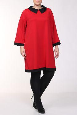 Платье FRIO                                                                                                              красный цвет