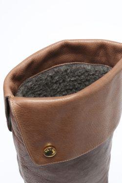 Сапоги Conhpol                                                                                                              коричневый цвет
