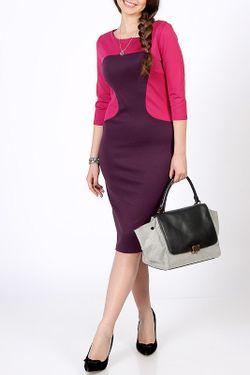 Платье Марина Spicery                                                                                                              фиолетовый цвет