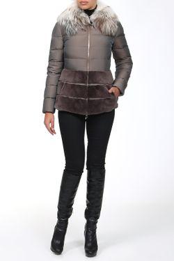 Куртка Gianfranco Ferre                                                                                                              серый цвет