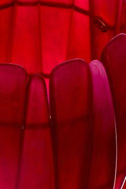 Браслет-Стрейч Фуксия Kenneth Jay Lane                                                                                                              многоцветный цвет