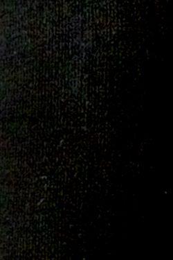 Теплые Леггинсы Burlesco                                                                                                              черный цвет