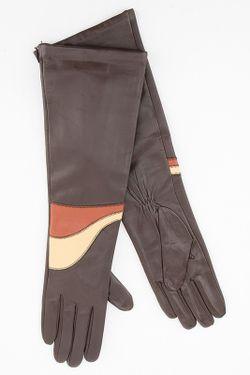 Перчатки Sabellino                                                                                                              многоцветный цвет