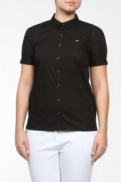 Рубашка Lacoste                                                                                                              черный цвет