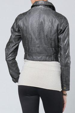 Куртка Cocogio                                                                                                              None цвет