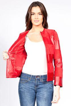 Куртка Giorgio                                                                                                              красный цвет