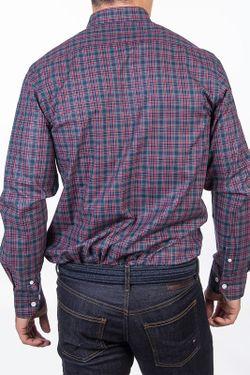 Рубашка POLO CLUB С.H.A.                                                                                                              многоцветный цвет