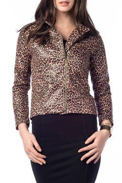 Куртка UNITEKS                                                                                                              коричневый цвет