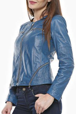 Куртка Mangotti                                                                                                              синий цвет