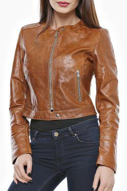 Куртка Mangotti                                                                                                              коричневый цвет