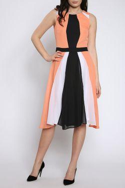 Платье Moda Di Chiara                                                                                                              чёрный цвет