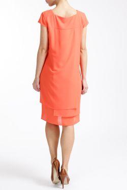 Платье Paola Collection                                                                                                              красный цвет