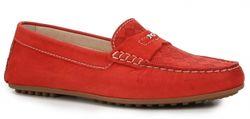 P512931d Оранжево-Красный Nero Giardini                                                                                                              None цвет