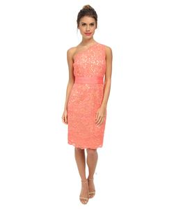 Laundry By Shelli Segal | One Should Lace Dress With Grograin