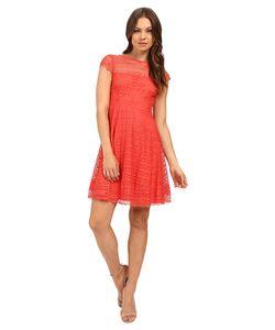 Jessica Simpson   Lace Cap Sleeve Fit Flare Dress Js6t8820