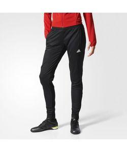 Adidas | Трикотажные Брюки Tiro17 Trg Pntw
