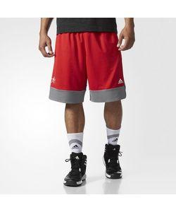 Adidas | Шорты All-Star