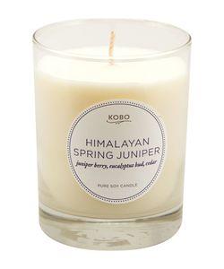 Kobo Candles | Ароматическая Свеча Himalayan Spring Juniper 312Гр.