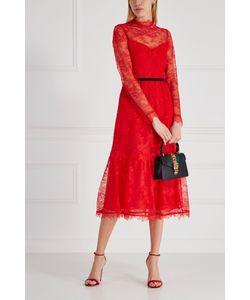 Erdem | Гипюровое Платье Georgie
