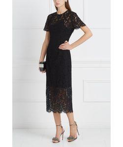 Diane Von Furstenberg | Кружевное Платье Carly