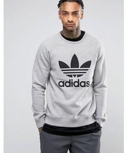 adidas Originals | Свитшот С Круглым Вырезом И Логотипом-Трилистником Bk5866