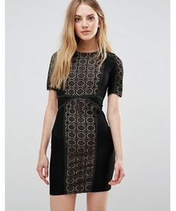 WYLDR | Кружевное Платье С Контрастной Подкладкой