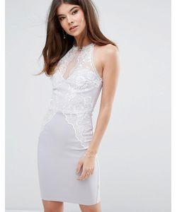 Lipsy   Облегающее Платье С Кружевной Отделкой