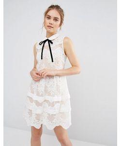 Endless Rose | Кружевное Платье Мини С Ярусами И Контрастной Отделкой