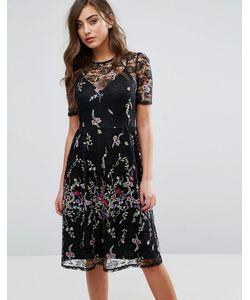Miss Selfridge | Кружевное Платье Миди С Вышивкой