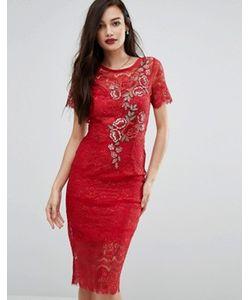 Body Frock | Кружевное Облегающее Платье С Цветочной Аппликацией Bodyfrock