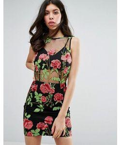 MISSGUIDED   Сетчатое Платье Мини С Вышивкой Premium