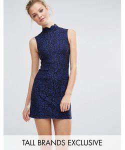 Fashion Union Tall | Короткое Приталенное Платье Из Кружева