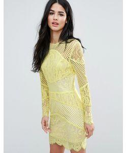FOREVER UNIQUE | Кружевное Облегающее Платье Мини Со Вставками