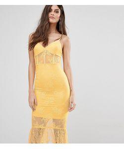 NaaNaa | Кружевное Платье С Корсетом