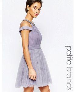 Little Mistress Petite | Платье Для Выпускного С Открытыми Плечами И Отделкой