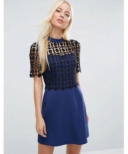 Asos | Платье-Трапеция С Кружевным Лифом Premium