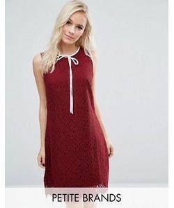 Vero Moda Petite | Кружевное Платье Мини С Бантом Спереди Vero Moda