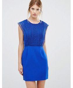 Greylin | Платье С Кружевной Отделкой Esme