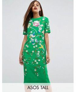 ASOS TALL   Цельнокройное Платье С Вышивкой