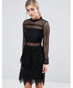 Miss Selfridge | Кружевное Платье С Длинными Рукавами