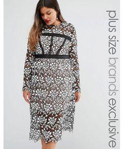 Truly You | Платье-Футляр Премиум Из Цветочного Кружева С Длинными Рукавами