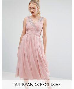 Little Mistress Tall | Тюлевое Платье Миди Для Выпускного