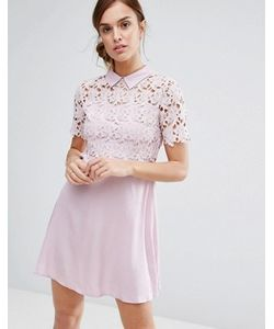 Little White Lies | Philo Dress Lace Shift Dress With Collar